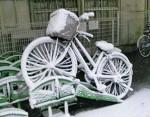 2週続けての大雪に、 愛車も雪化粧